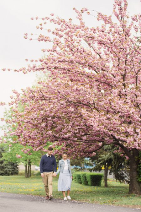 Couple under the tree in Kosice