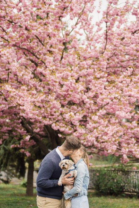 Kiss under the tree